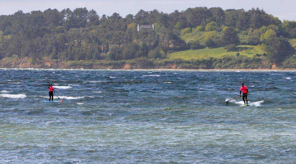 Semaine Niveau 2 downwind Océan Paddle Camp
